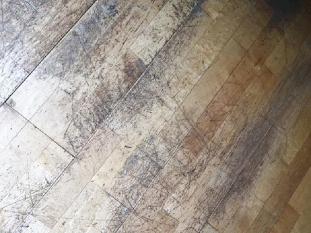 Pulido y barnizado suelo de roble pulir parquet barcelona - Como pulir parquet ...